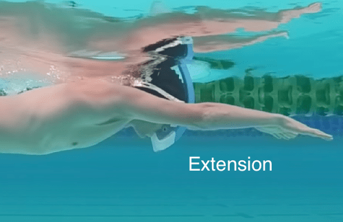 freestyle extension